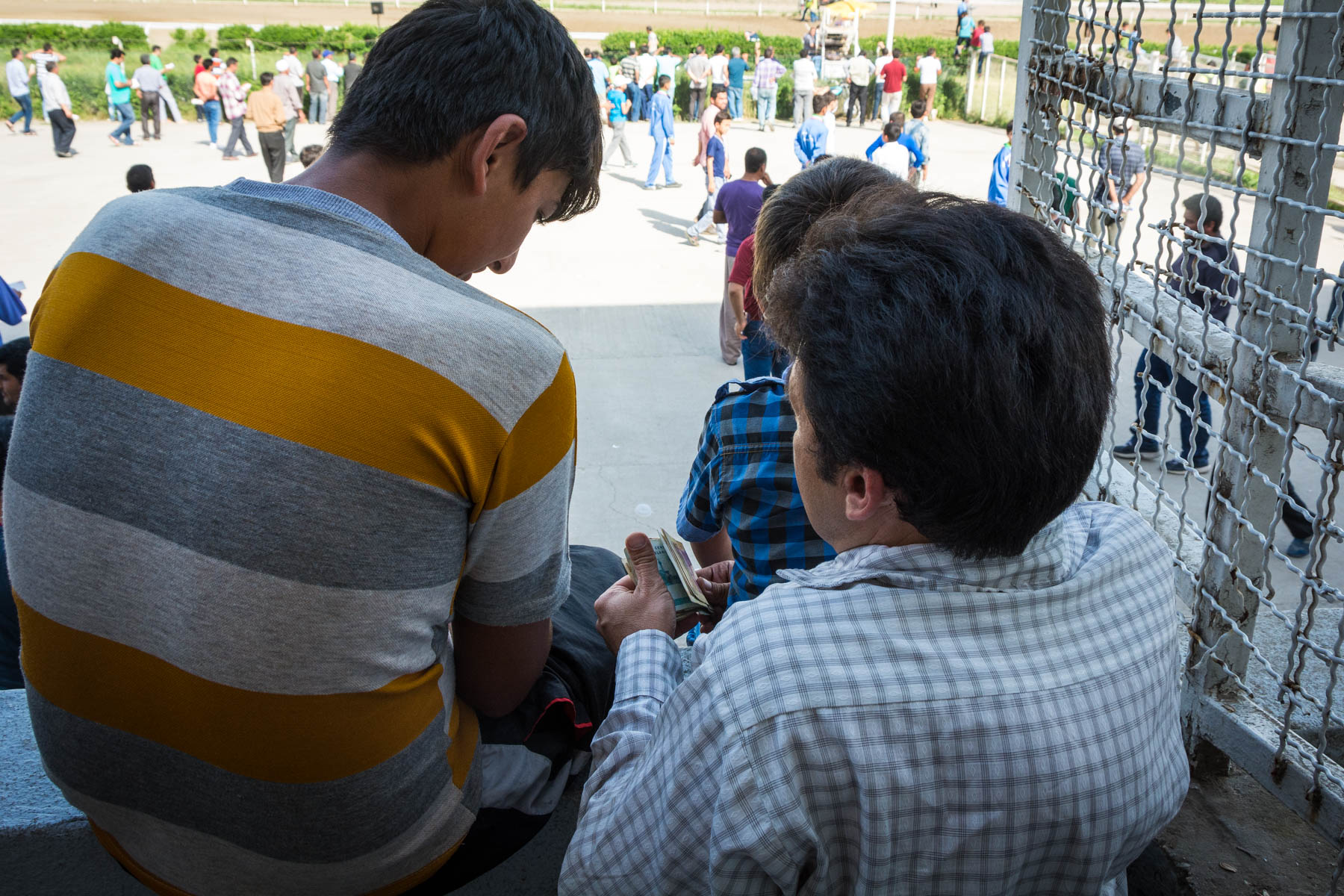 Paying out bets at the horse races in Gonbad-e Kavus, Iran.