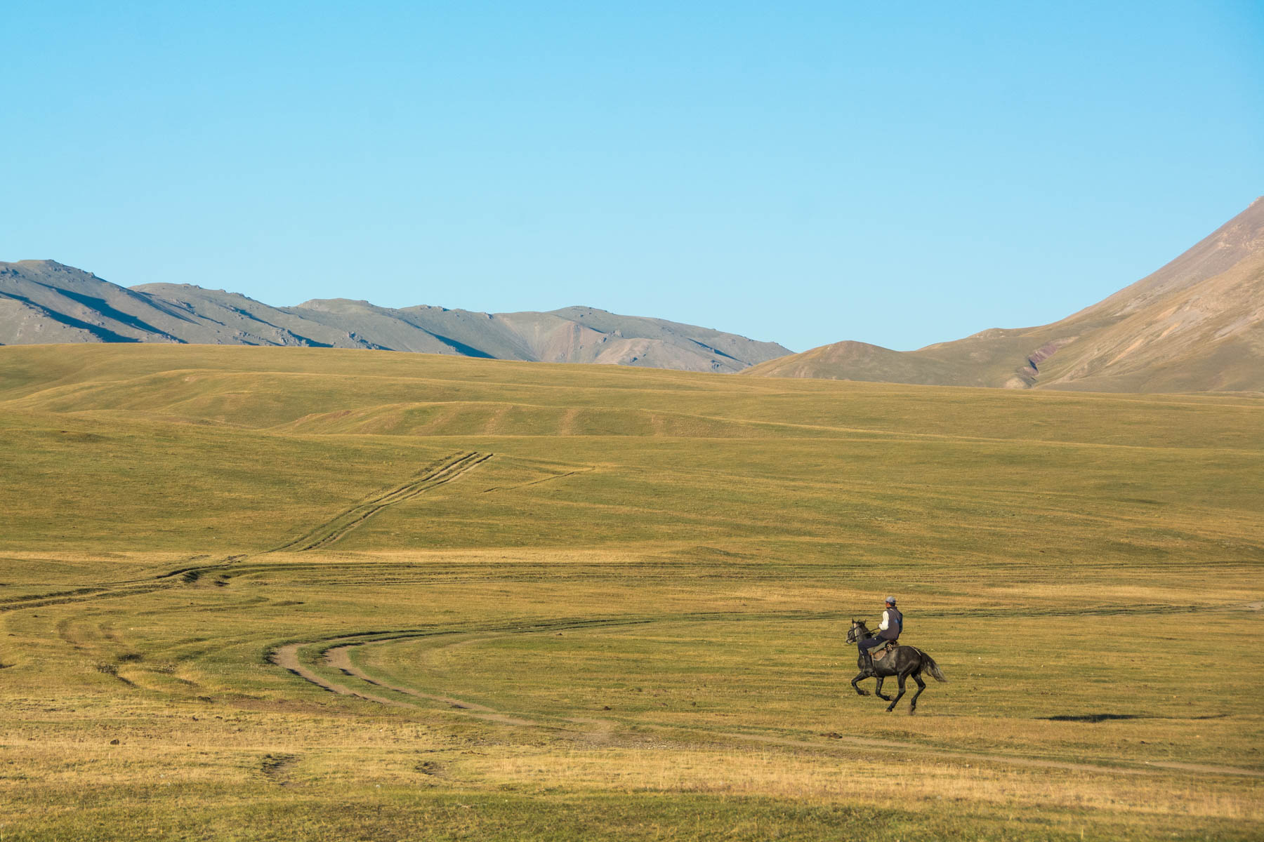 A Kyrgyz horseman riding around at Song Kul lake - Lost With Purpose