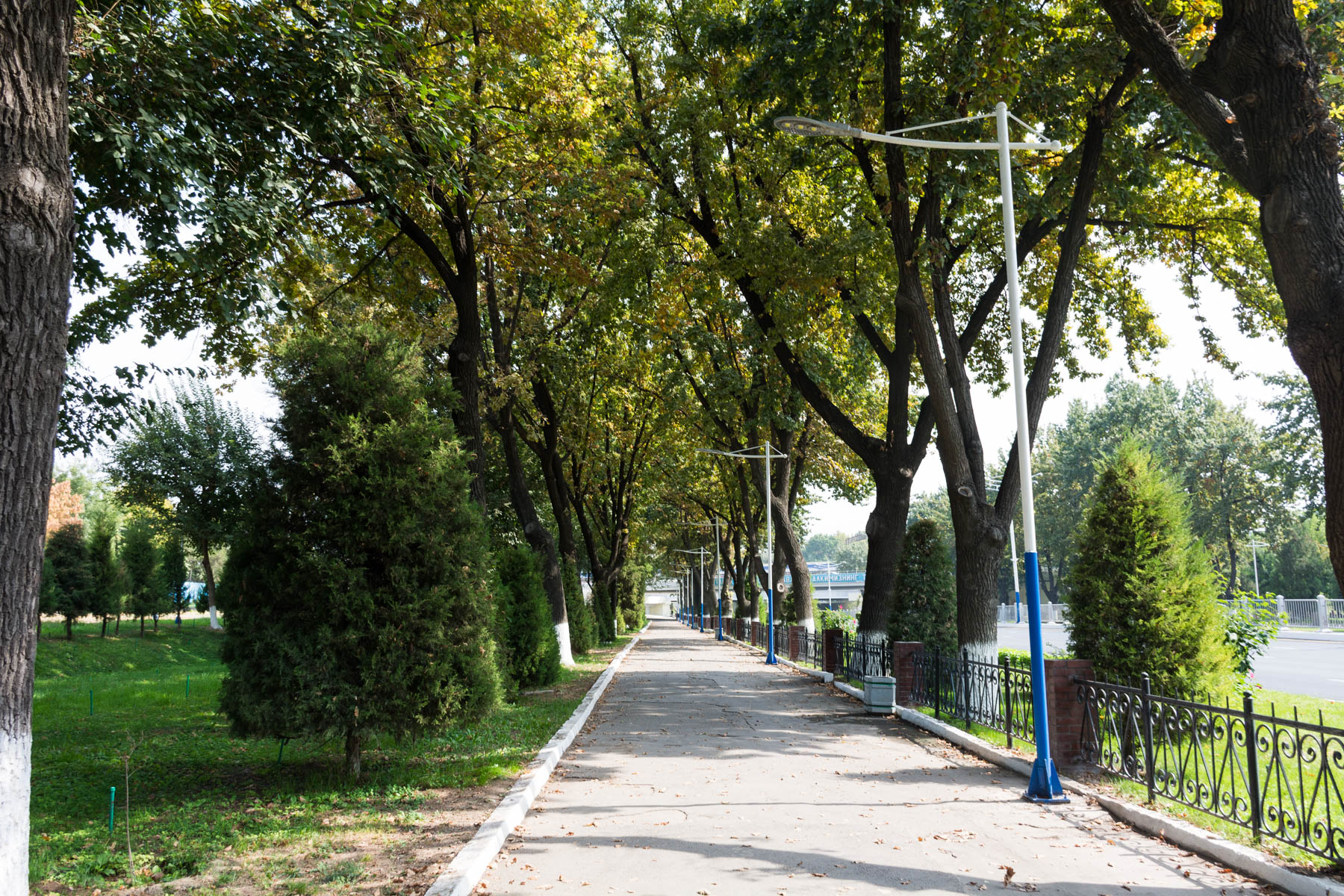 A path on the way to the Indian Embassy in Tashkent, Uzbekistan - Lost With Purpose