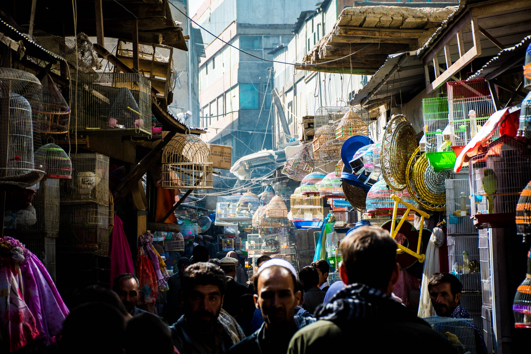 Ka Faroshi Bird Market in Kabul, Afghanistan - Lost With Purpose